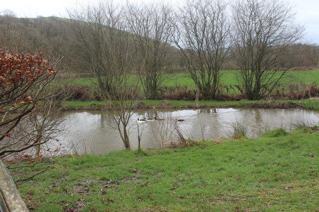 Duck pond, Rhydfelen, Cil-y-cwm Road