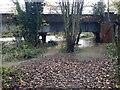 SP2965 : At the railway bridge the Riverside Walk is a riverside paddle, Emscote, Warwick by Robin Stott
