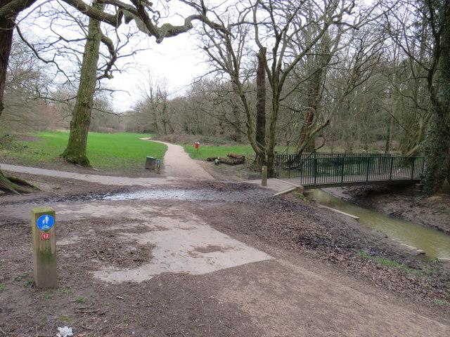 Paths in Hilly Fields Park, near Enfield