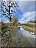 SO0153 : Floodwater on dismantled railway by Alan Hughes