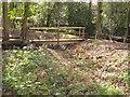 TQ2479 : Rainwater storage ditch, Holland Park by David Hawgood
