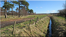 NJ1366 : Drainage Ditch by Anne Burgess