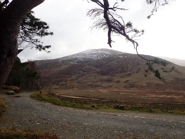 View across the Tullybranigan Bog towards Slievenabrock and Shan Slieve Mountain