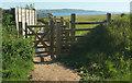 SS2004 : Coast path at Upton by Derek Harper