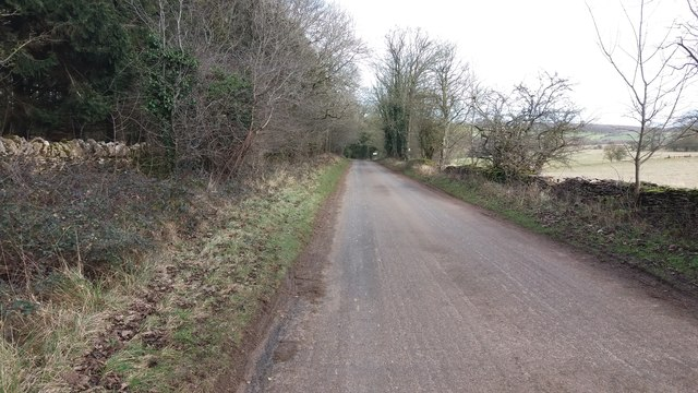 Road by Home Ground Plantation