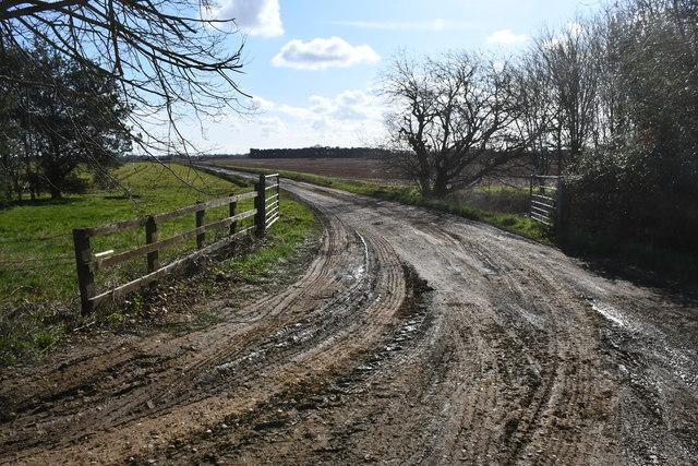 Muddy Farm track off Main Street