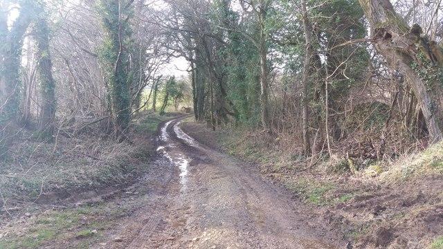 Track near Dirty Bridge