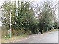 TQ5842 : Driveway and footpath, Southborough by Malc McDonald