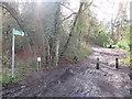 TQ5541 : Public bridleway near Speldhurst by Malc McDonald