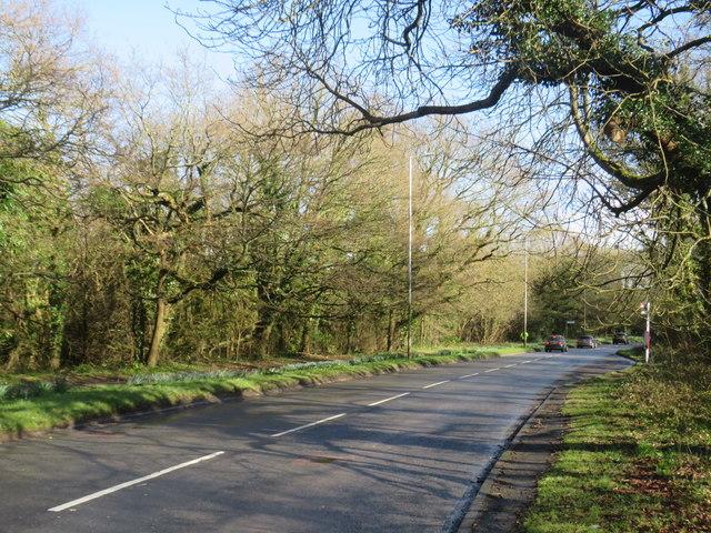 Langton Road (A264) at Rusthall Common