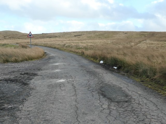 Beware of sheep on Cotherstone Moor