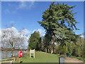 SJ8640 : Trentham Gardens: 'Brownian mound' by Stephen Craven