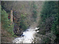 NS8842 : Dundaff Linn, New Lanark by David Dixon