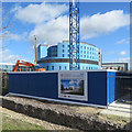TL4654 : Building the Cambridge Heart and Lung Research Institute by John Sutton