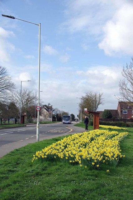 Bus Stop A1137 Main Road Boreham