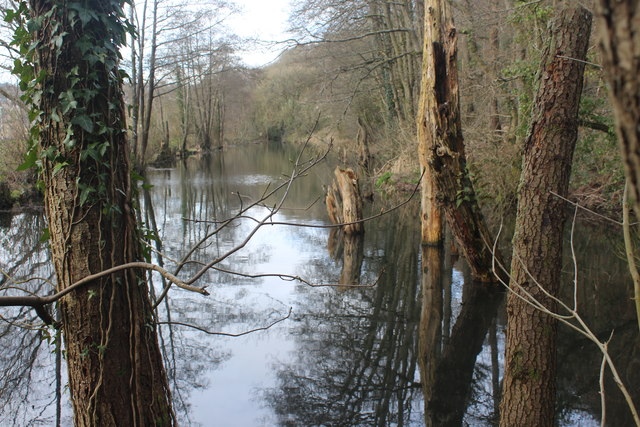 Derelict Crumlin Arm canal, Newbridge