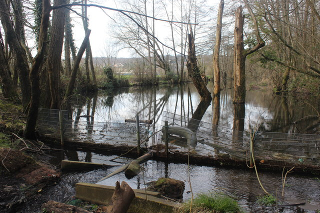 Site of former canal lock, Crumlin Arm