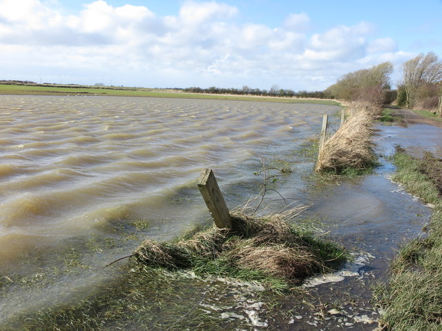 Flooded Field adjacent to dismantled Avenue Branch Railway Line