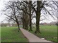 TQ3790 : Lloyd Park, Walthamstow by Malc McDonald