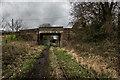 SJ9553 : Bridge Carrying Denford Road Over The Disused Leek Line by Brian Deegan