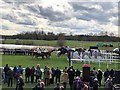 TL2072 : Horses jumping the open ditch fence at Huntingdon Racecourse by Richard Humphrey