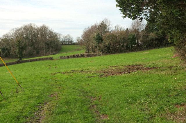 Fields near Ayreville