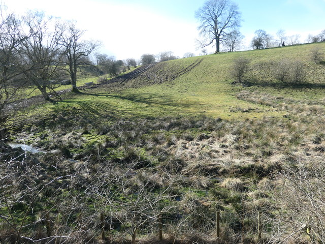 Farmland south-west of Phillis Wood