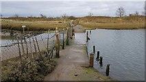 TM2222 : Kirby-le-Soken: Causeway at Kirby Quay by Nigel Cox