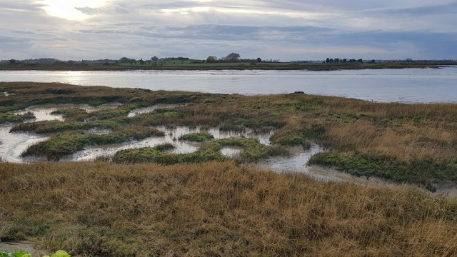 Kirby-le-Soken: Salt marsh and creeks east of Peter's Point