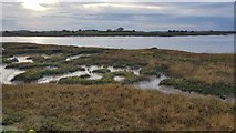 TM2223 : Kirby-le-Soken: Salt marsh and creeks east of Peter's Point by Nigel Cox