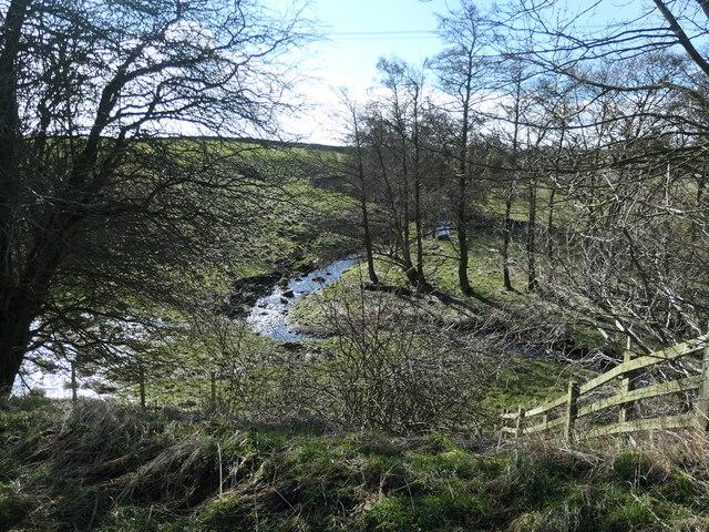 Wilden Beck, below Buck Hill