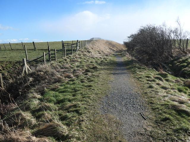 Railway cutting on Buck Hill