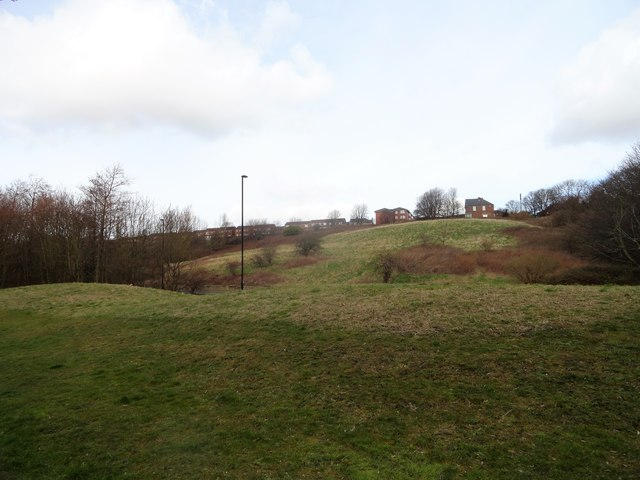 View of Rosehill Bank