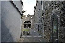 R3377 : Ennis Friary by N Chadwick