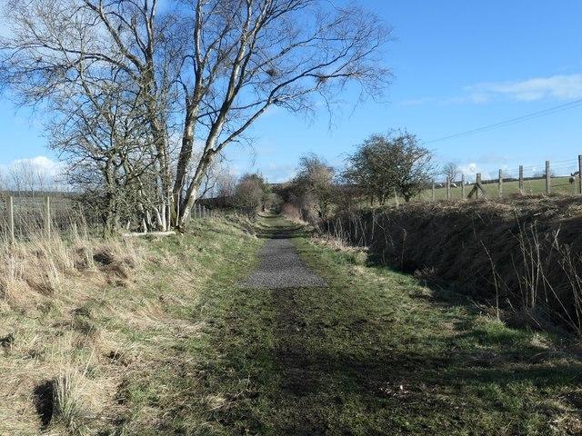 """Hard unsealed surface"" on the Tees Railway Path"