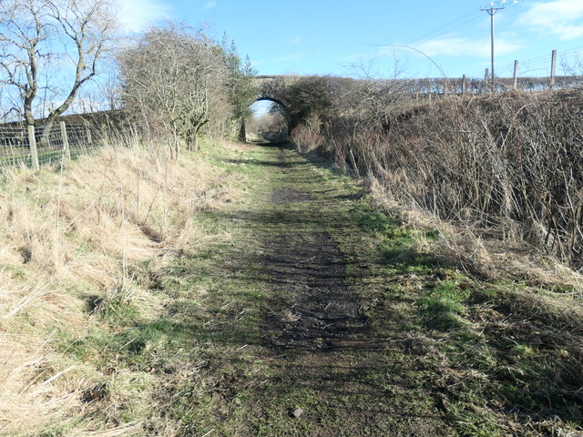 One of the two overbridges on the Tees Railway Path [1]