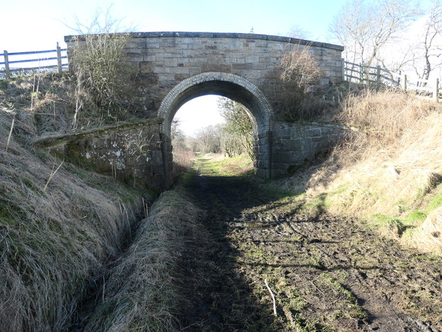 One of the two overbridges on the Tees Railway Path [2]
