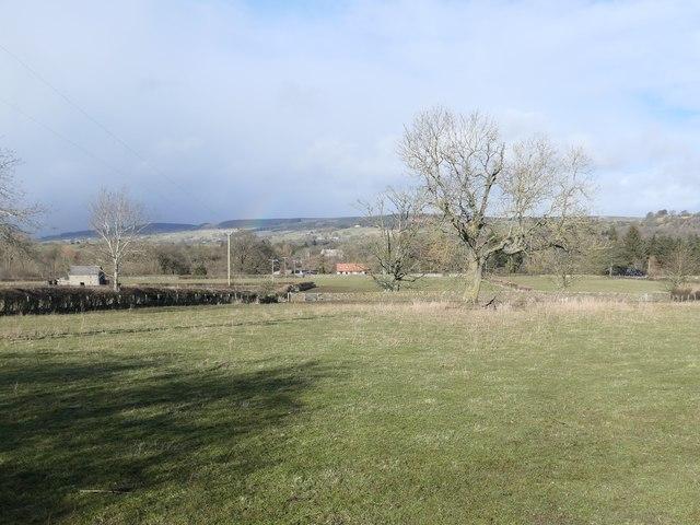Farmland with trees, Scalehow Rigg