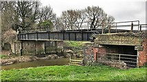 TQ1913 : Bridge carrying the Downs Link path over the River Adur by Ian Cunliffe