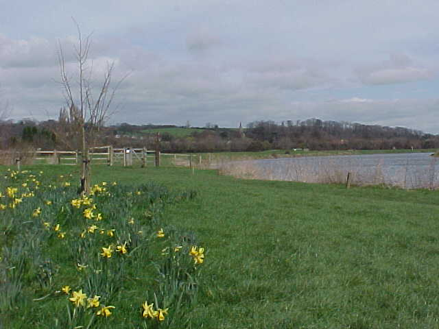 The River Trent near Burton Joyce