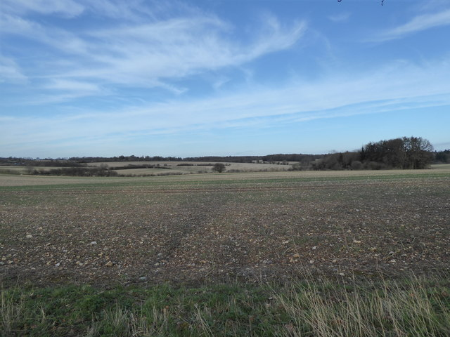 View from Half Mile Road, Carol's Acre on the right