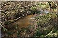 SX7881 : Wray Brook by Derek Harper