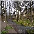 NT2673 : The Skelf bike park by Richard Webb