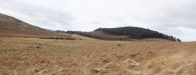 View West across the frith towards the col between Slievenabrock and The Drinns