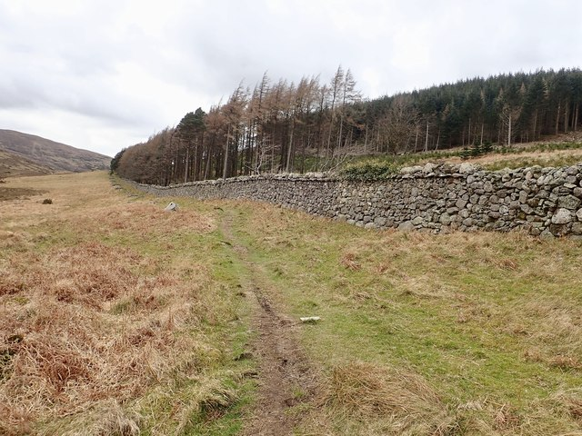 Path alongside the Tollymore Demesne Wall