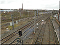 NY4055 : Railway tracks north-west of Victoria Viaduct by Stephen Craven