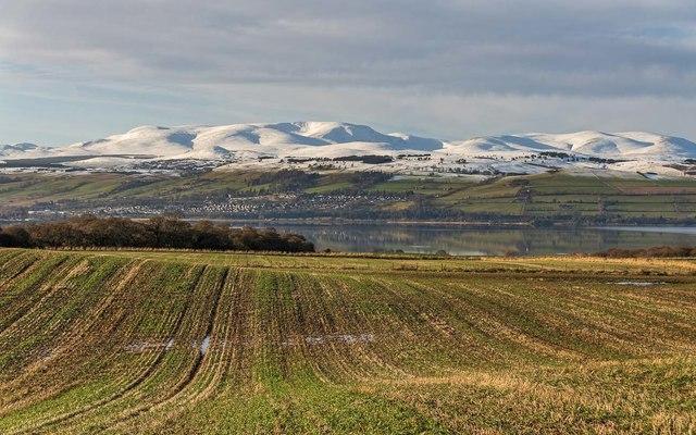 Field at Duncaston