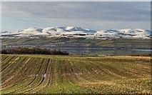 NH5857 : Field at Duncaston by valenta