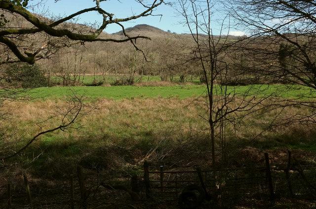 Wray Brook valley