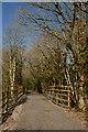 SX7881 : Wray Valley Trail north of Lustleigh by Derek Harper